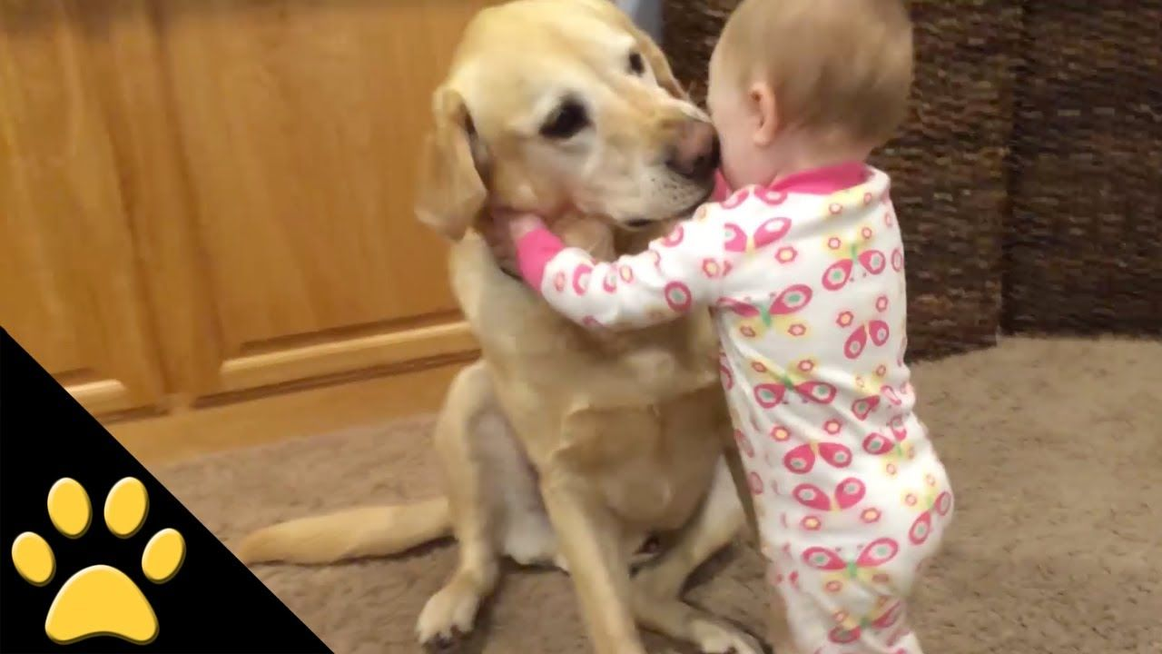 Here Is Why Kids Need Their Best Pet Friends They Look Adorable