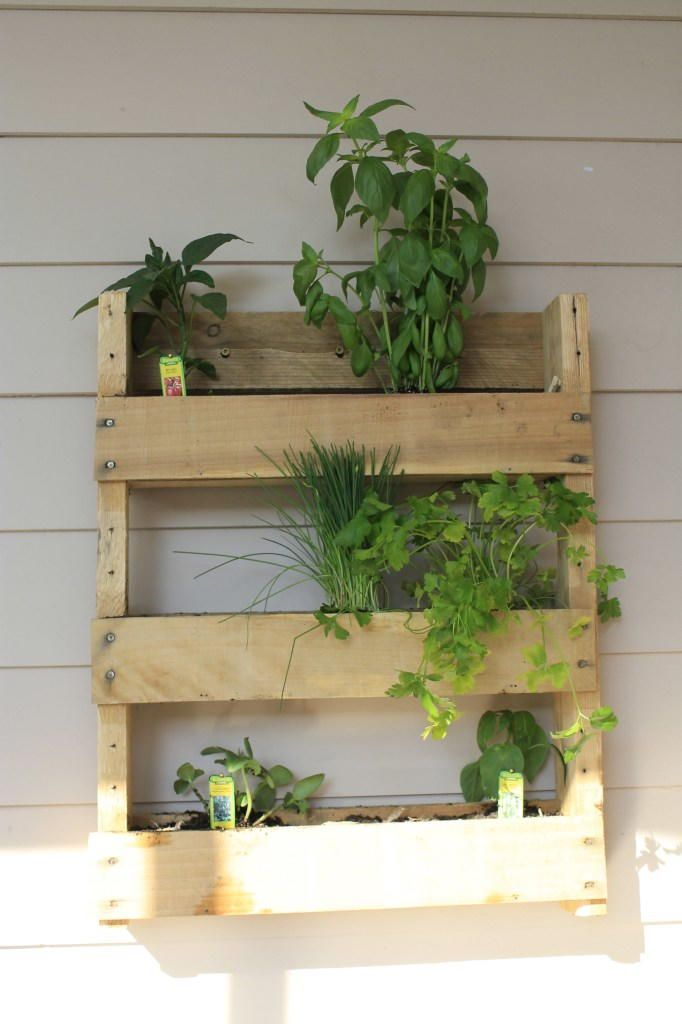 diy herb garden for apartments live in a small space on indoor herb garden diy apartments living walls id=62126