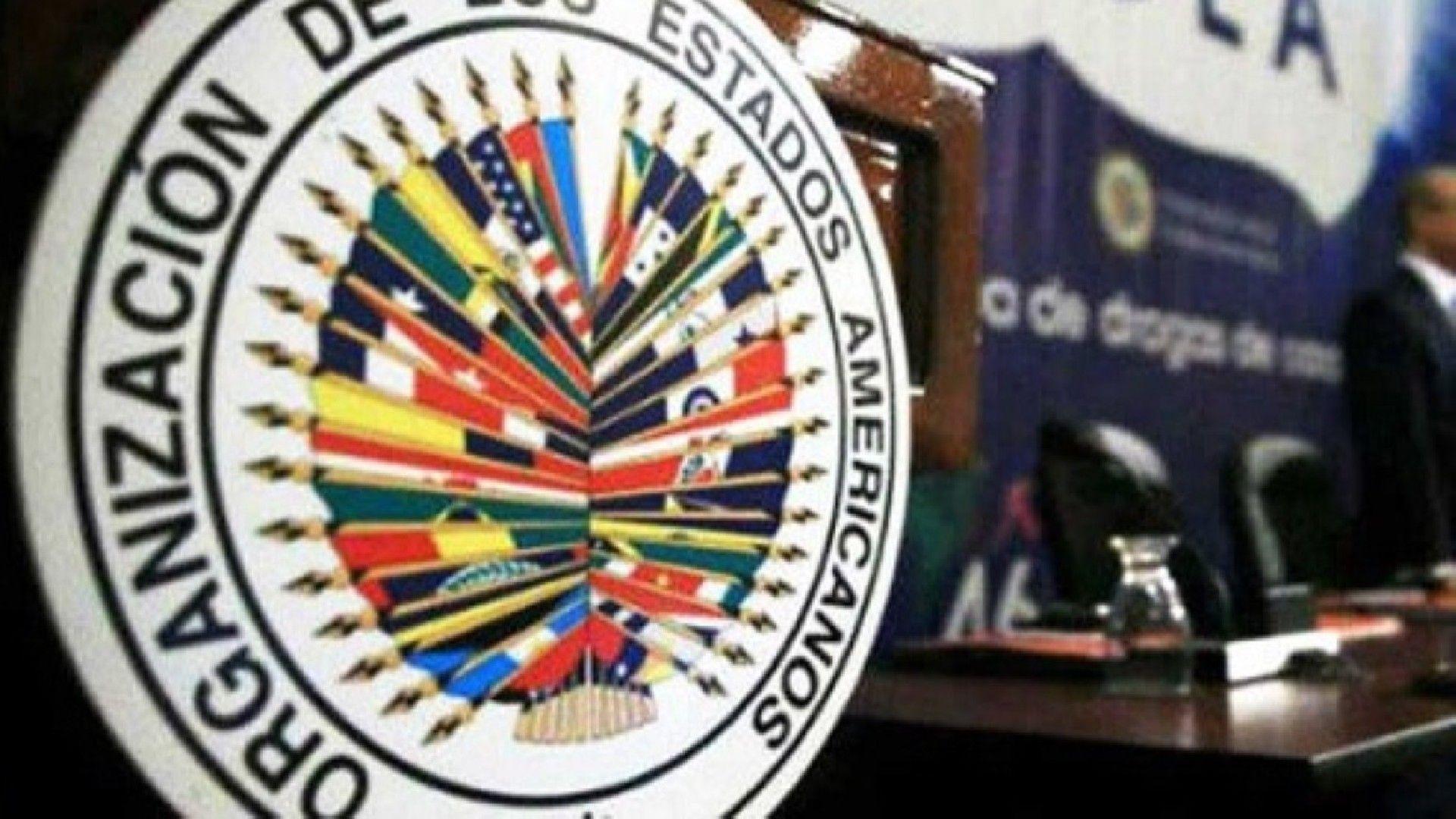 ¿Qué dice el informe de la OEA? in 2020 Cards
