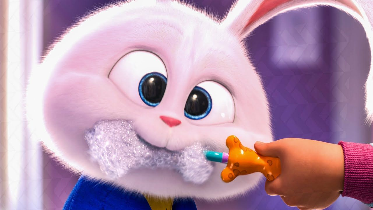 The Pets Return This Summer In The New Movie The Secret Life Of Pets 2 Coming To Theaters June 7 2019