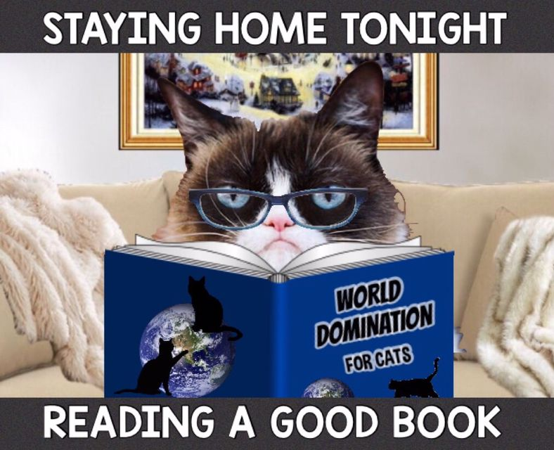 Grumpy Says Reading Is Fundamental Read A Good Book Funny