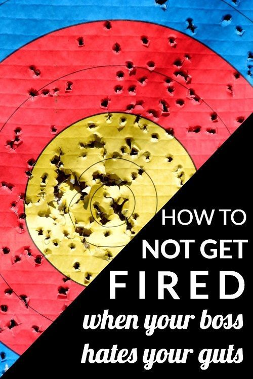 can you avoid getting fired when your boss hates you heres our advice for what - Getting Fired How To Avoid Getting Fired From Your Job
