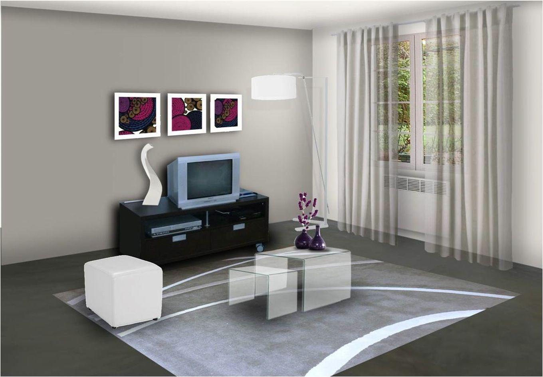 Stylish Deco Idees Peinture Salon Salle Manger Idee Couleur Sejour Idees  For Couleur Peinture Sejour