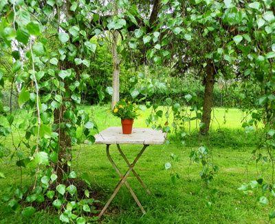 Gartengestaltung Und Gartenplanung: Die Besten Ideen Und Tipps