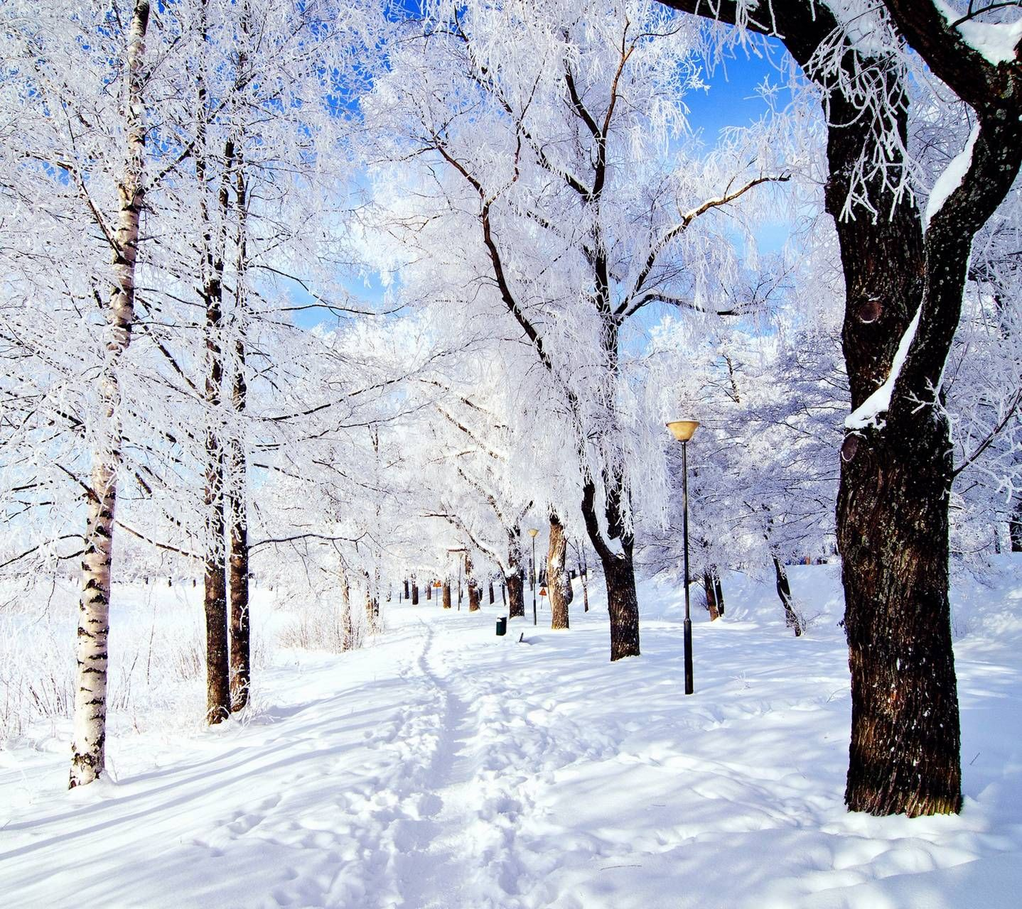 Winter Wonderland Background Music Free Download