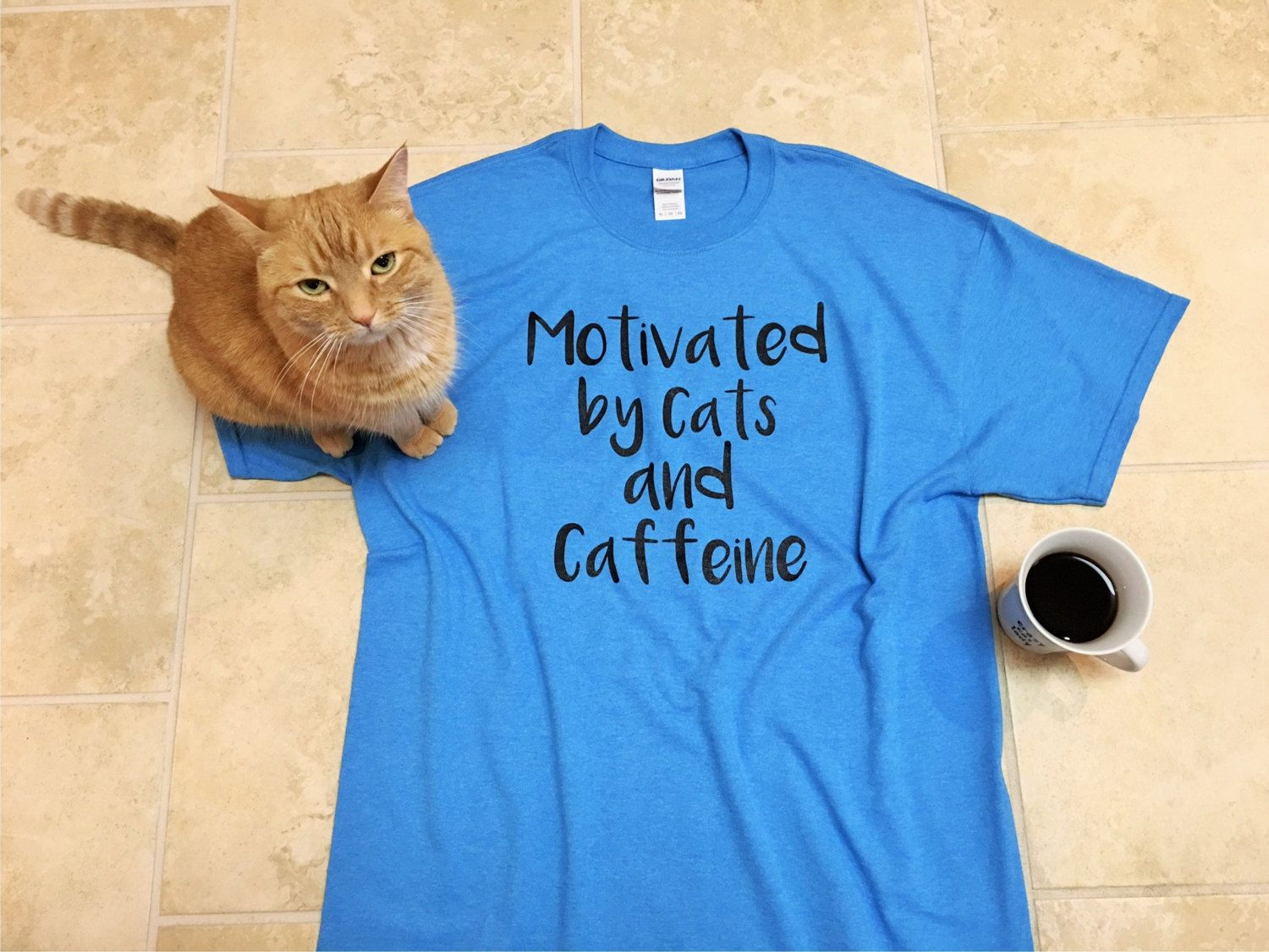 Graphic Tee Cat shirt funny tees brunch shirt Cats and
