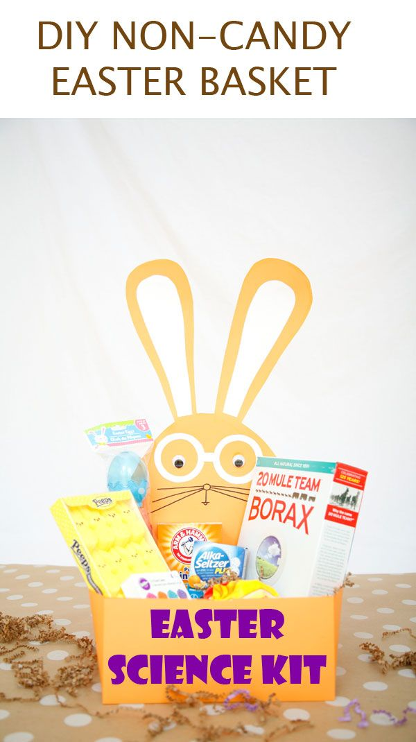Diy easter science kit for kids a great non candy easter basket diy easter science kit for kids a great non candy easter basket idea negle Image collections