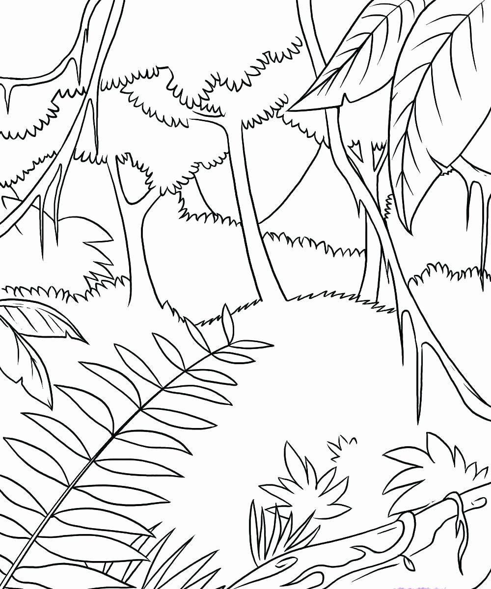 Autumn Tree Coloring Pages (Dengan gambar) Warna, Gajah