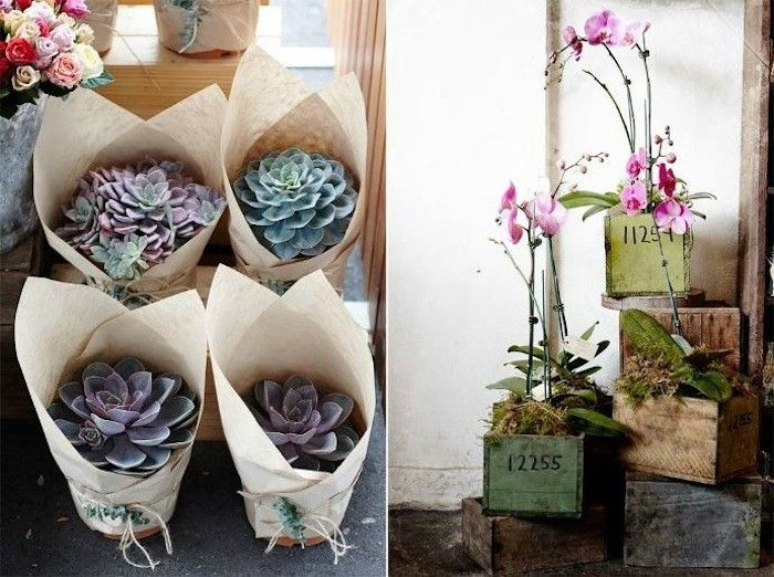 This is why I obsessed with indoor plants lately Totally gorgeous
