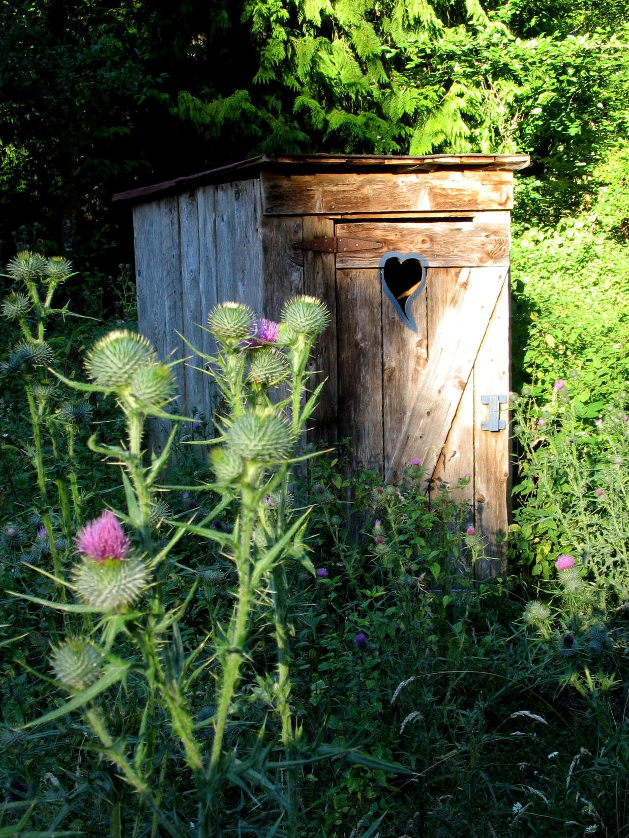Build Your Own Outhouse | The Ready Store