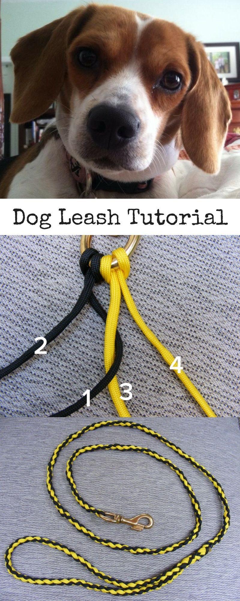 Make a paracord dog leash paracord dog leash dog leash