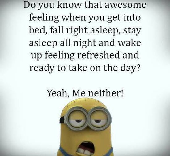 Sleep 。◕‿◕。 See my Despicable Me Minions pins www.pinterest.com……