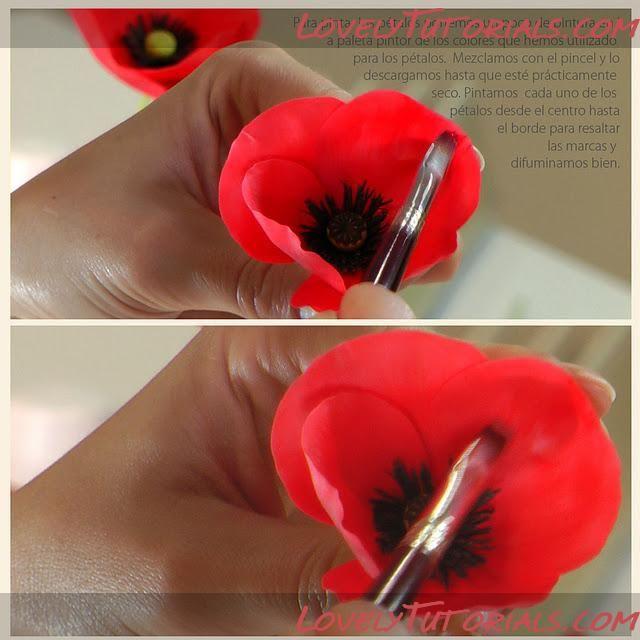 Gum paste poppy tutorial via lovelytutorials cukorpasztt s gum paste poppy tutorial via lovelytutorials cukorpasztt s eszkzket vsrolj a glazurshopban httpshopazur mightylinksfo