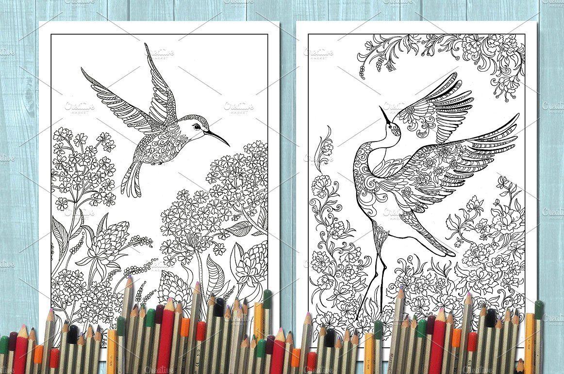 Coloring Book Birds Coloring Books Bird Coloring Pages Bird Book