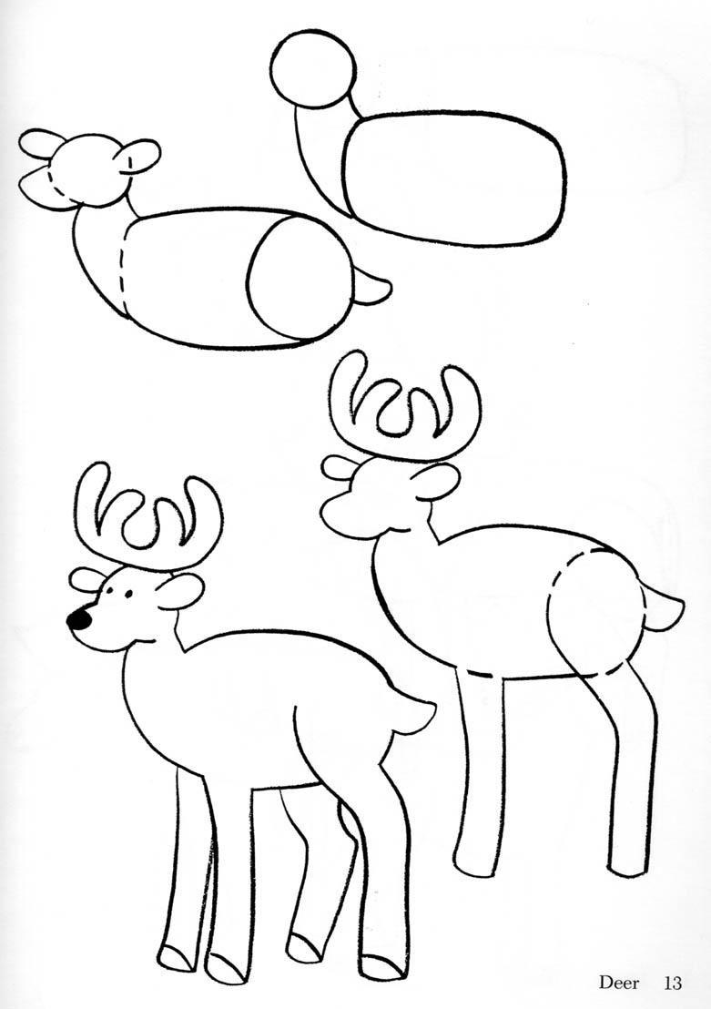 Free Clip Arts How To Draw Animals Clipart Dieren Tekenen Leer Tekenen Herten Tekening
