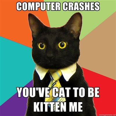 Business cat has computer problems