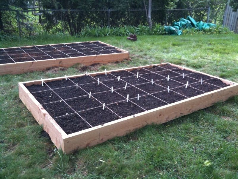 Exceptional Raised Bed Gardening Tips