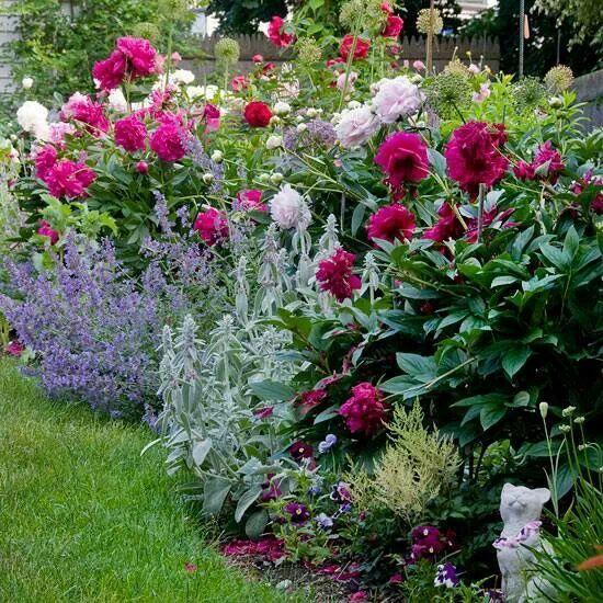 Cottage Style Landscape Design Peonies Garden Flower Garden Design Plants