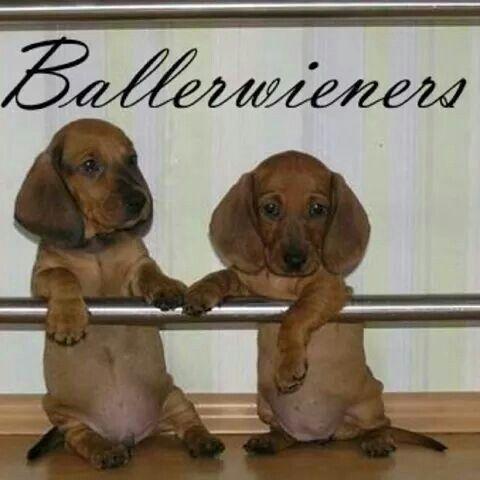 Ballerweiners