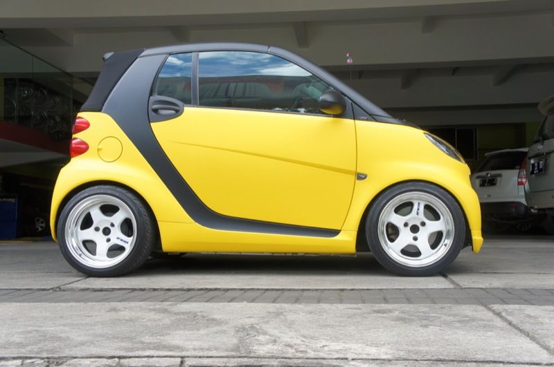 Mb Smart Fortwo 451 Dipped Bichos