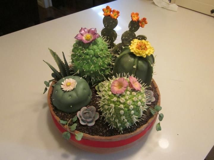 "THIS IS NOT REAL! These fabulous faux cactus in clay pot were made by cake decorator extraordinaire, Kathleen Little Sorokin! Better be careful someone doesn't try to water the cake!!     Kathy: ""Cactus Dish Cake (5 photos). In fondant terra cotta pot is Mexican spiced chocolate cake with dulce de leche icing. The four cactus cakes are margarita-flavored cake with lime curd filling and lime-cream cheese icing."""