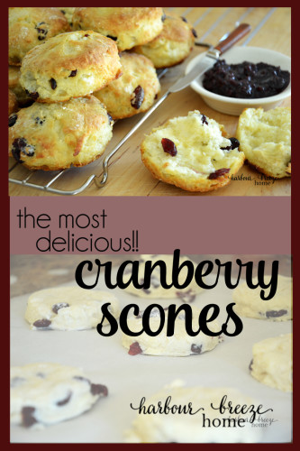 Buttermilk Cranberry Scones Recipe In 2020 Cranberry Scones Buttermilk Recipes Scones