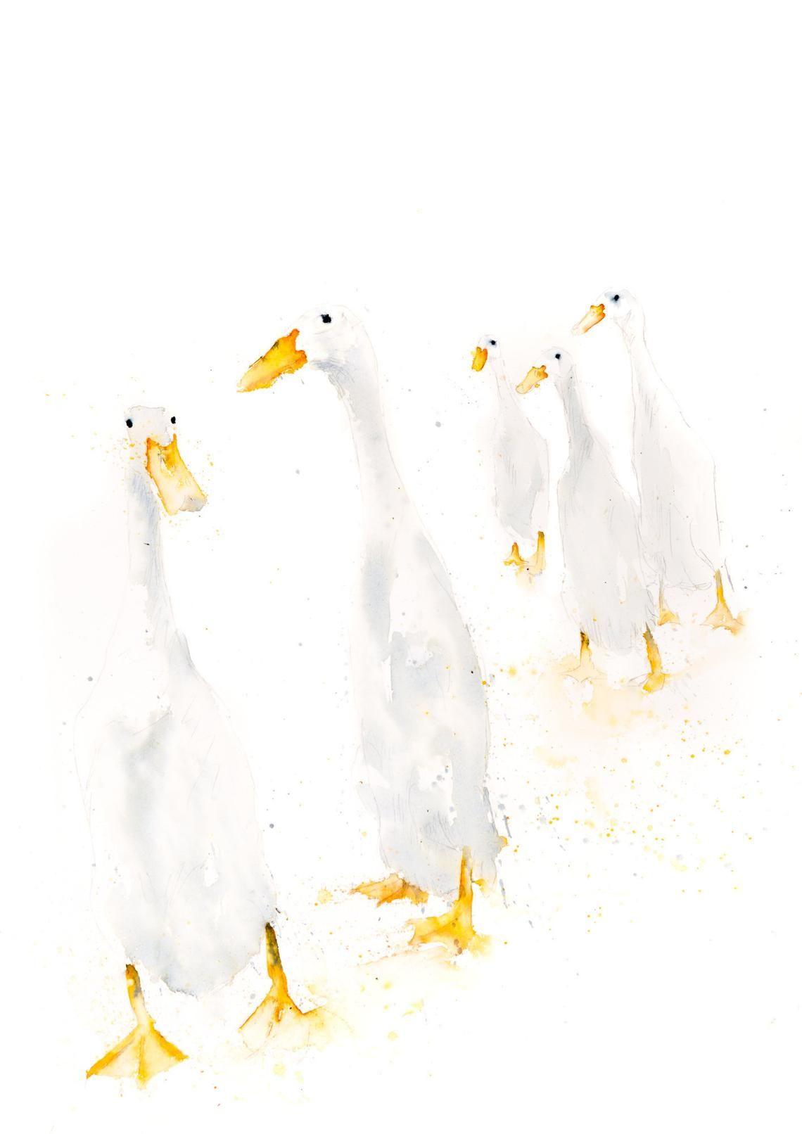 Runner Ducks Standing Wall Art Signed Print Of The Original Etsy
