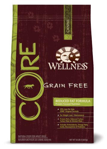 Wellness Grain Free Dry Dog Food For Adult Dogs Core Reduced Fat
