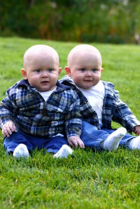 Google Image Result for http://www.raising-twins.com ...