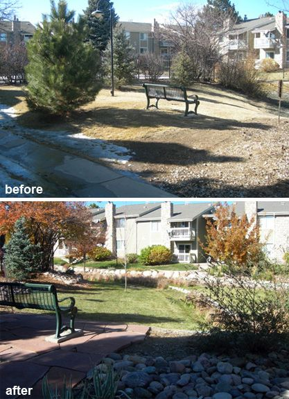 Hoa landscape renovation before and after before and for Landscape renovations