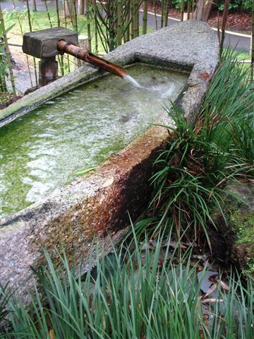 Stone basin water feature in Japanese Garden in San Francisco. Photo by Taryn Koerker