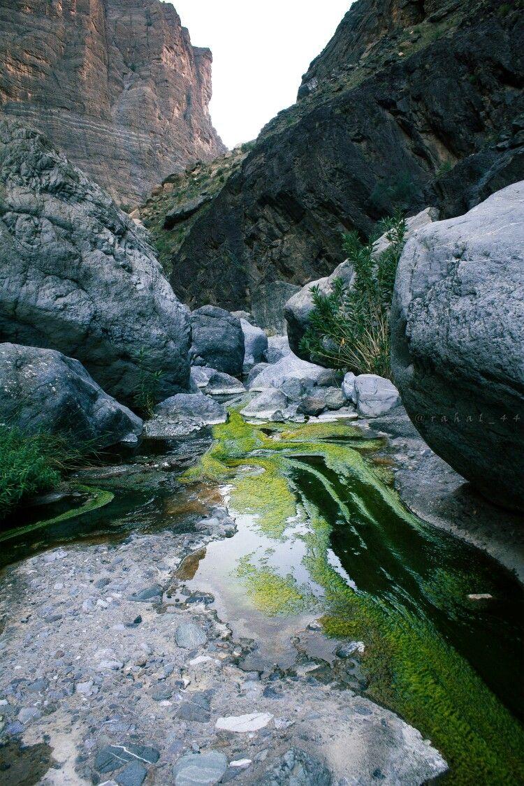 وادي سعدة في الجبل الأخضر Em 2021