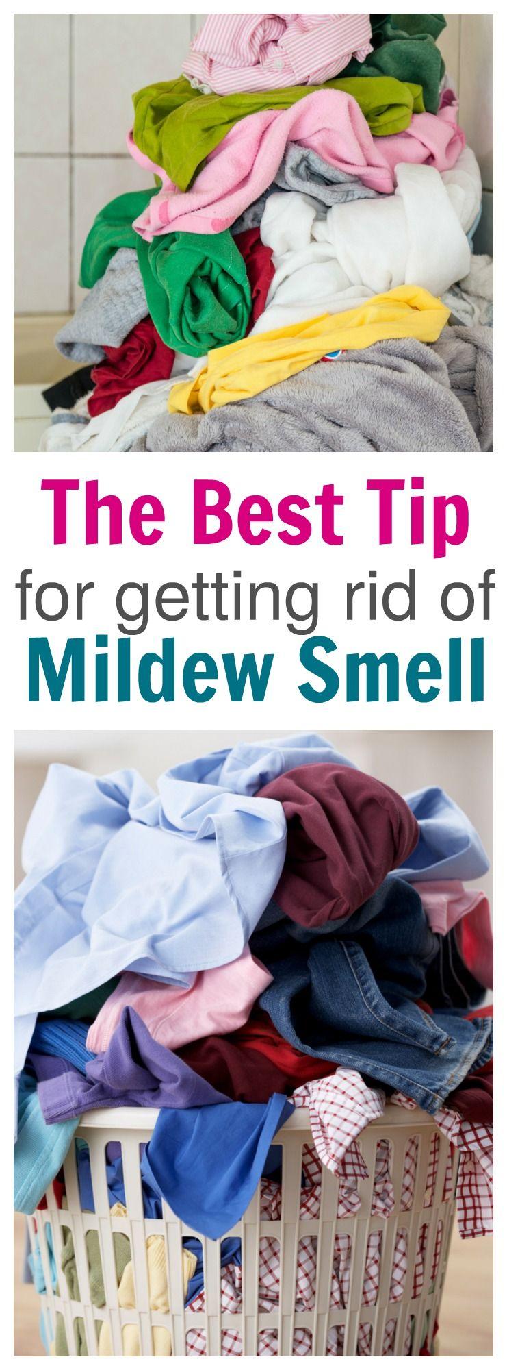 b2d99f4d0478f933dc25af2ebff90430 - How To Get Rid Of Mildew Smell In Hotel Room