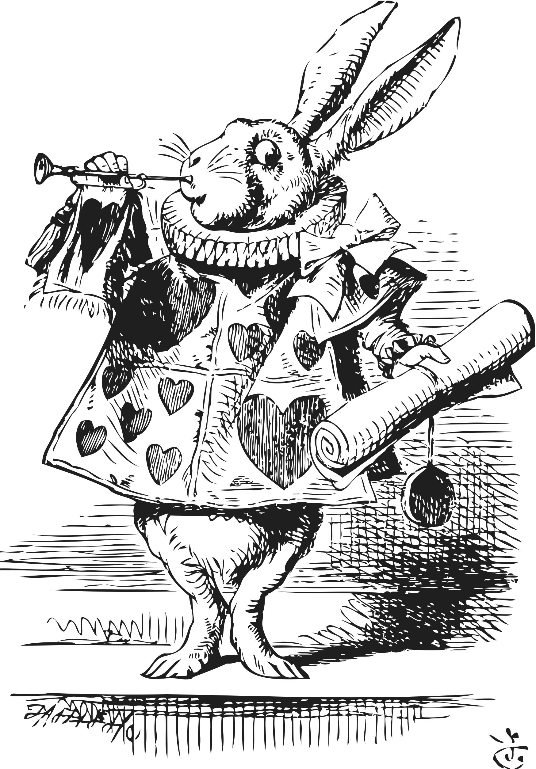 Original White Rabbit Illustration Wit Konijn Poster Artwork
