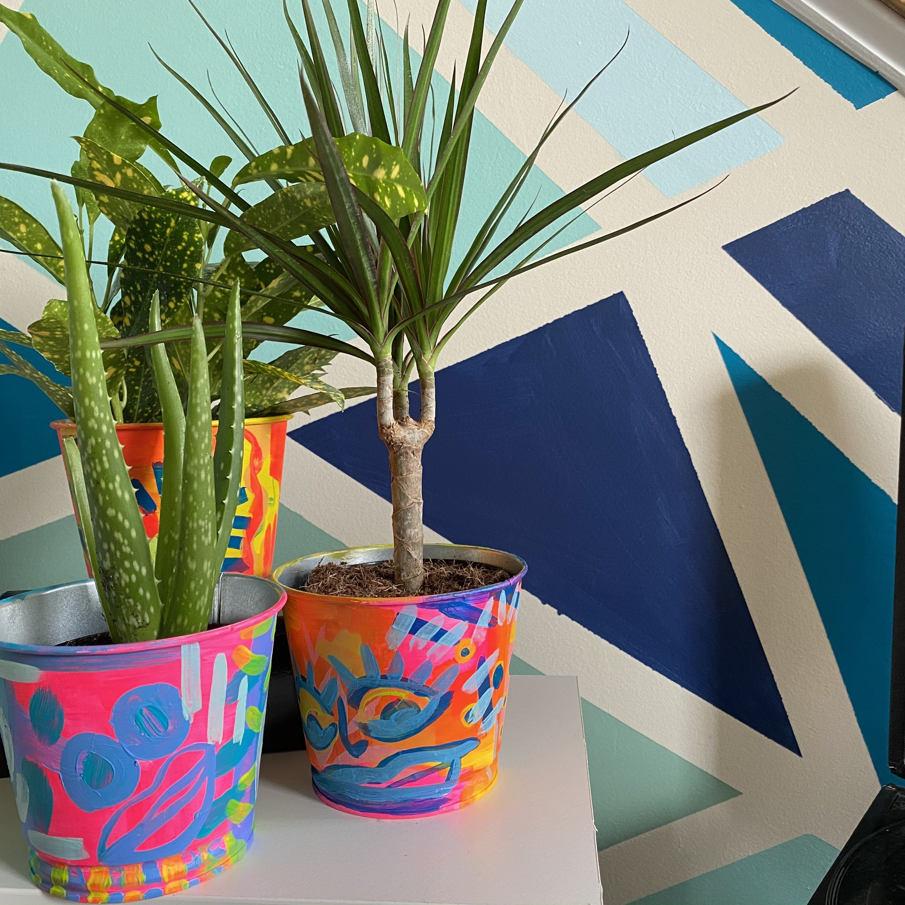 Photo of Hand Painted Planter Pots