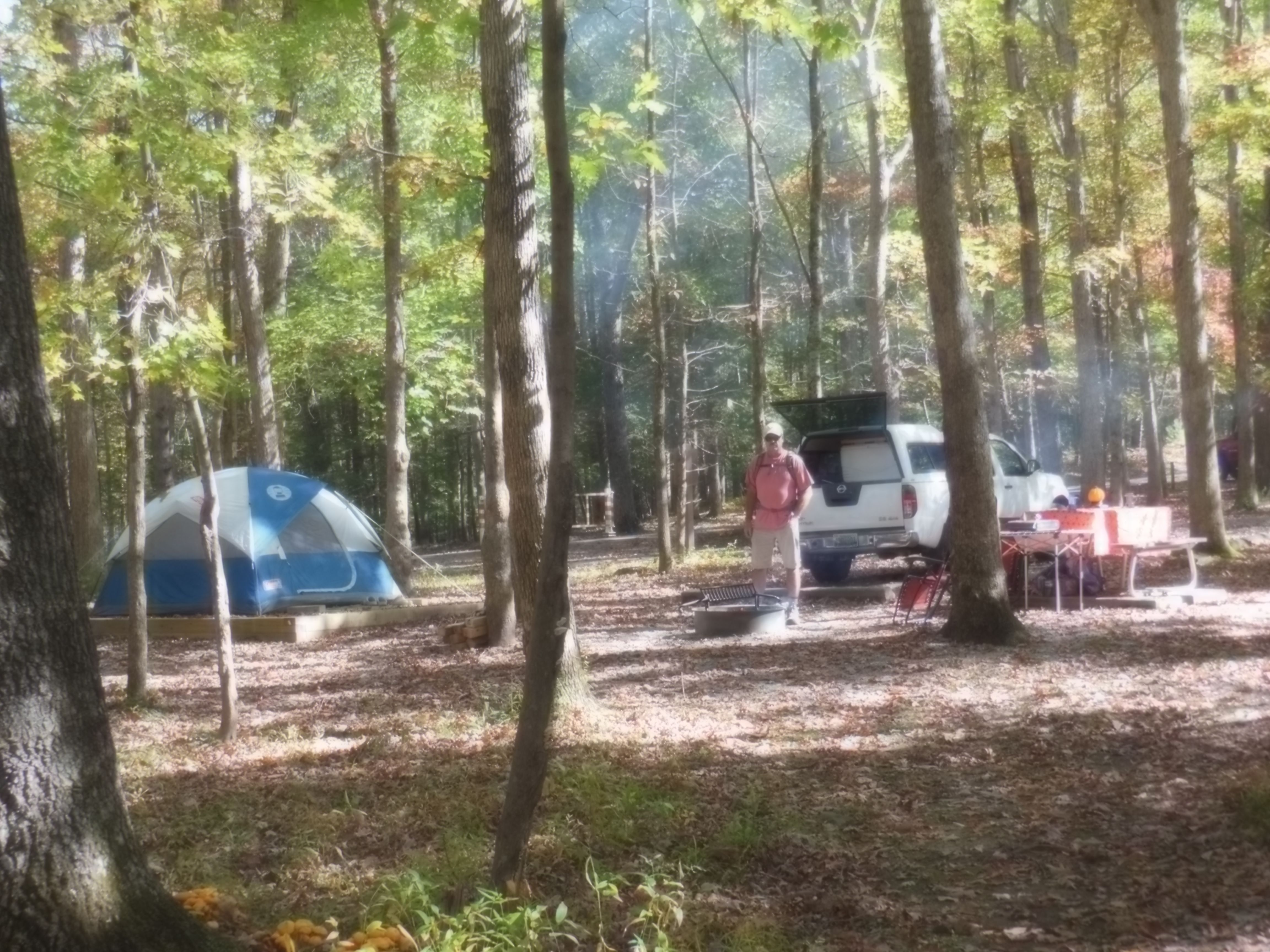 camping in cades cove   Cades cove, Smoky mountains, Camping