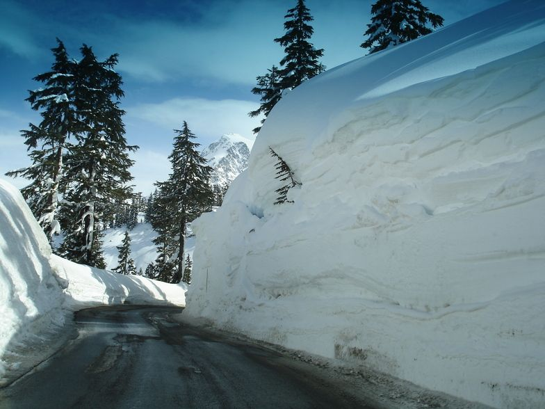 Mount Baker Artist Point Weather