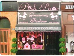 Repinned Dog Grooming Shop Dog Grooming Shop Grooming Shop Pet Grooming Business