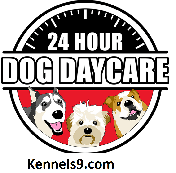 Kennels9 Daycare Center Provides Supervised Play And Socialization