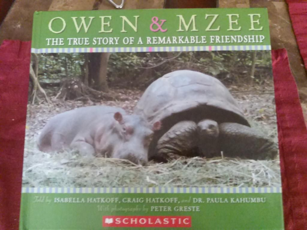 Booklovers Anonymous Owen And Mzee