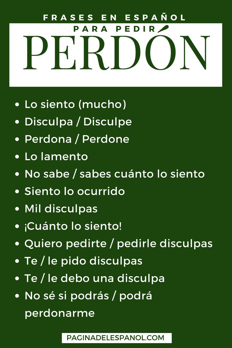 12 Frases En Español Para Pedir Perdón Estudio Pinterest