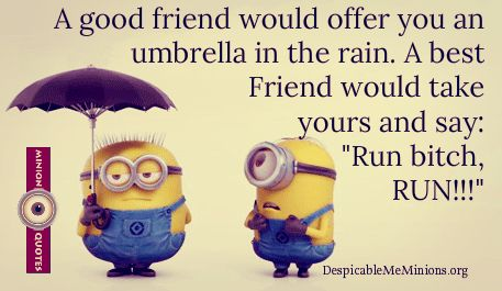 9 Funny Friendship Quotes Minion Quotes Birthday Wishes Words
