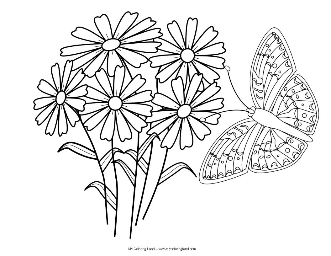 butterfly coloring pages - Google Search | nakis | Pinterest ...