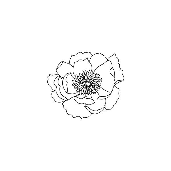 5125g Outline Poppy Impress Rubber Stamps 35 Pln Found On Polyvore Poppy Drawing Poppies Poppies Tattoo