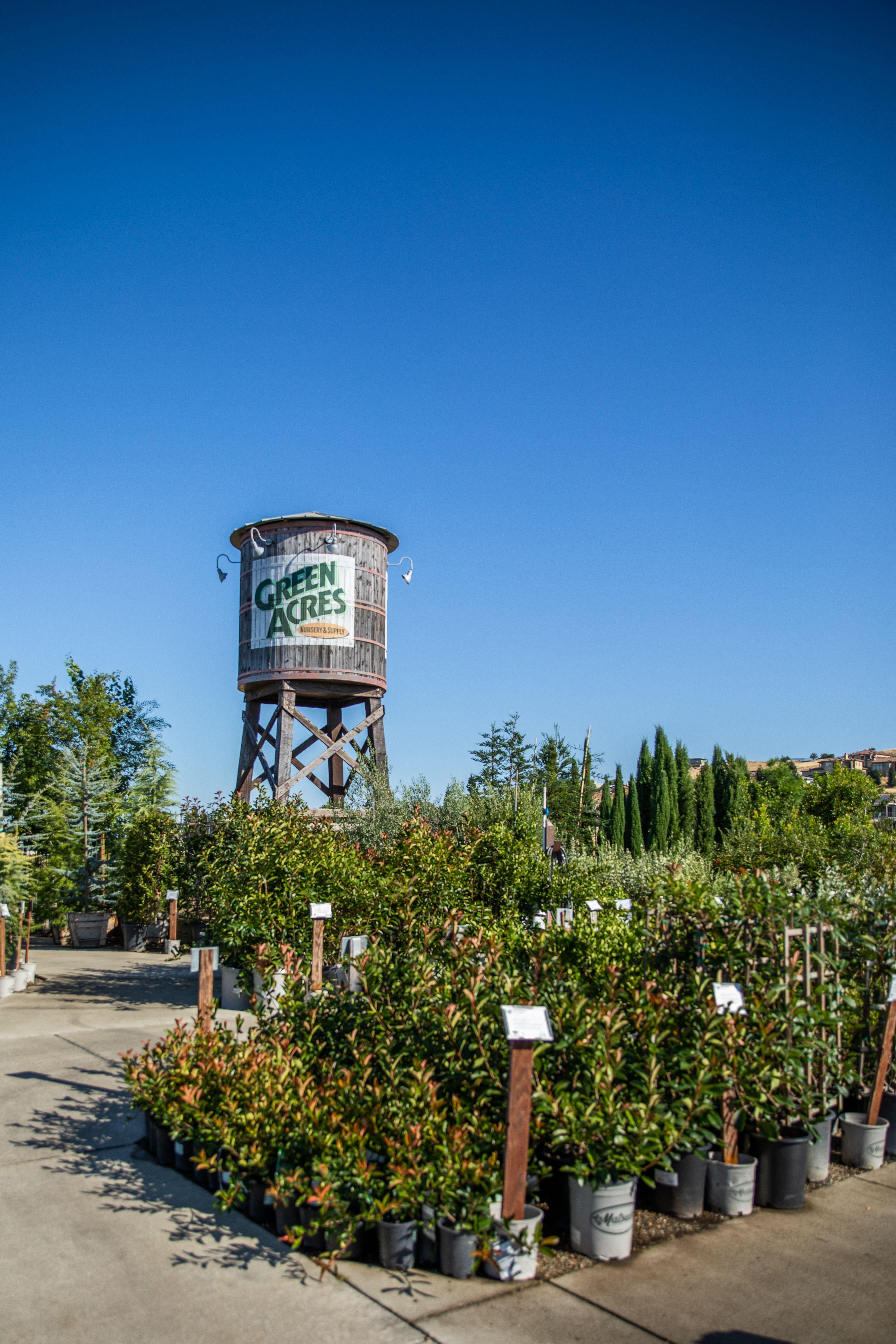 Garden center in Folsom with acres of trees, shrubs