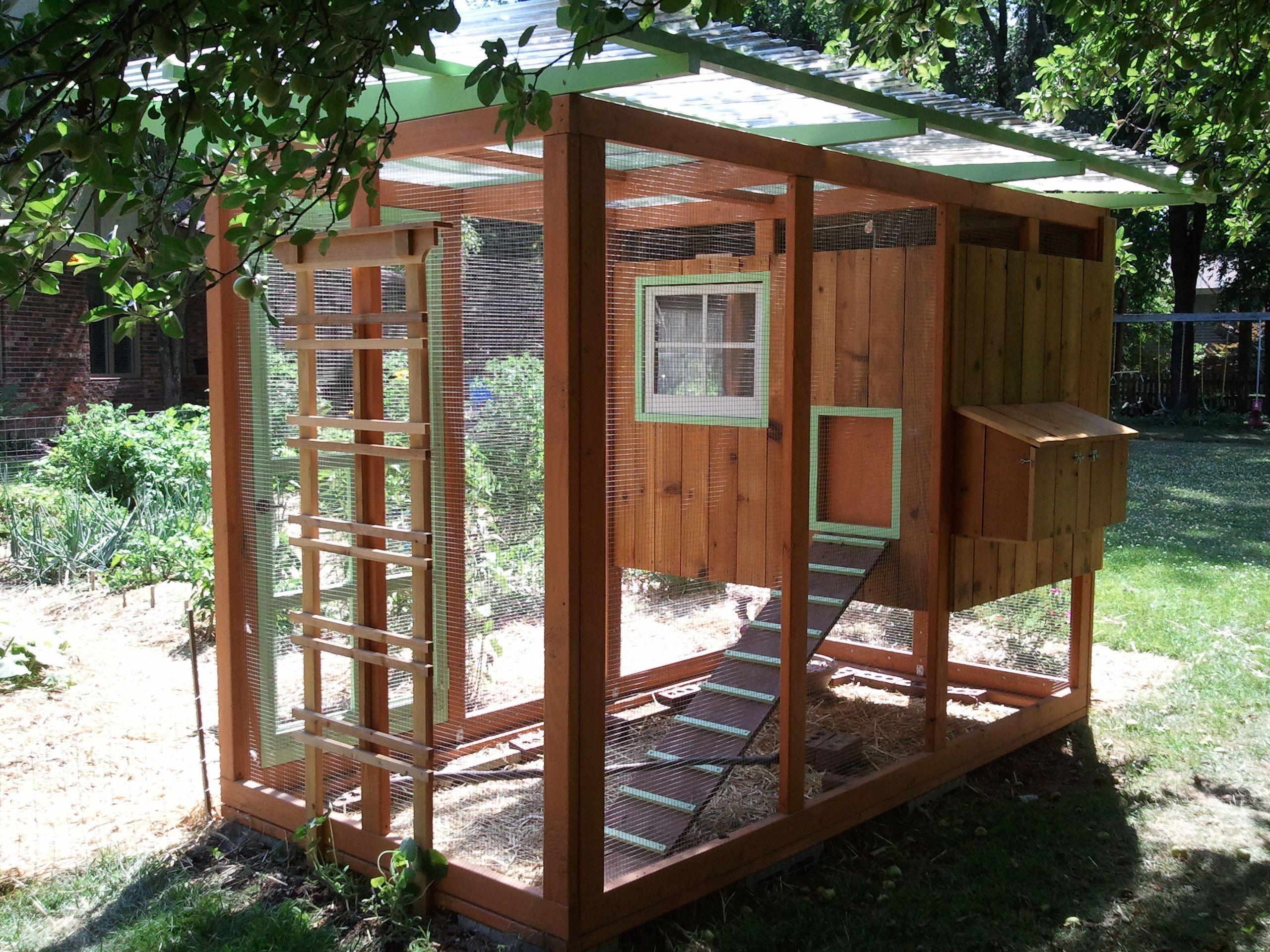 Bluegrass Coop Chickens Backyard Diy Chicken Coop Plans Backyard Coop