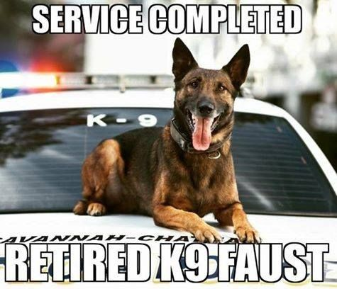 K9 Faust Retired E O W 29 September 2017 K9 Faust Served Savannah Chatham Metro Police Department From Military Service Dogs Military Dogs Service Dogs