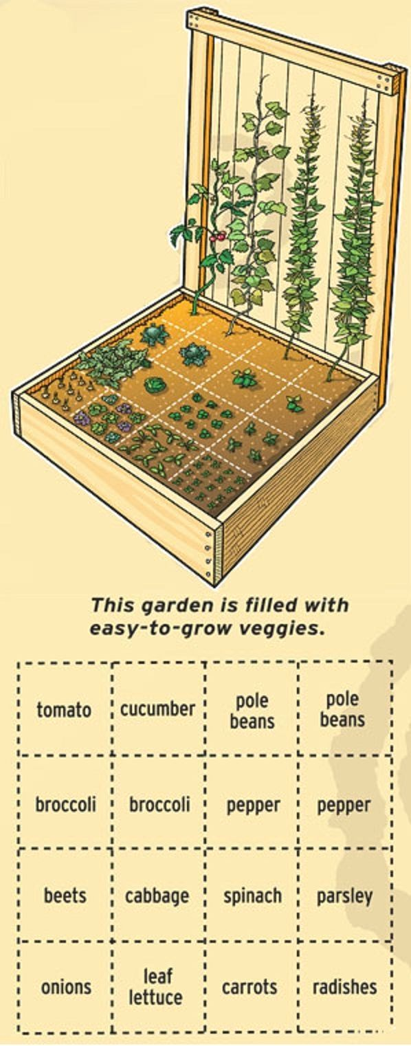 Home vegetable garden design  Professional CV Template Bundle  CV Package with Cover Letters for
