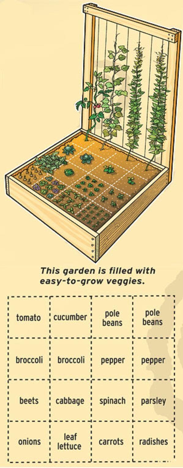 сколько процентов площади занимает огород