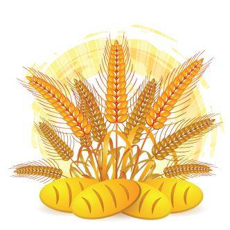 Vector Gratis De Pan Y Trigo Diseno De Logotipo De Panaderia Libre De Vectores Espiga De Trigo